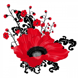 Sticker Coquelicot Design