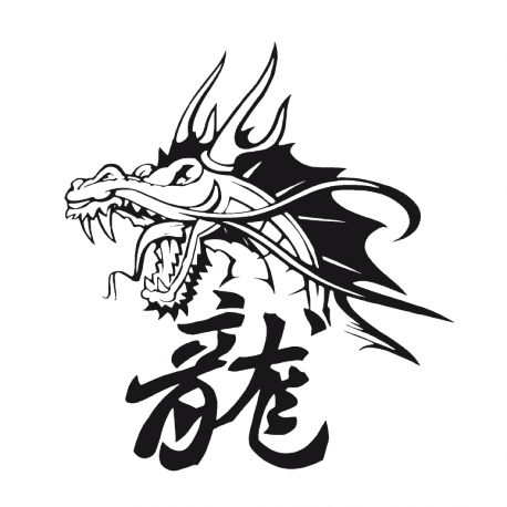 Sticker Tête de Dragon