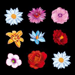 Sticker Fleurs du Printemps