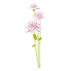 Sticker Fleurs sauvages