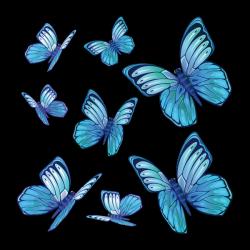 Sticker Papillons de nuit