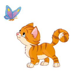 Sticker Chaton et papillon