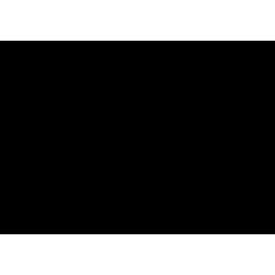 Sticker Cheminée baroque