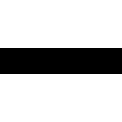 Sticker Caméléon