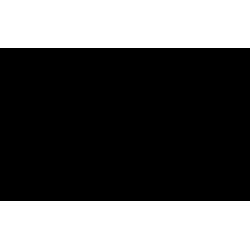 Sticker Galop étoilé