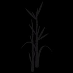 Sticker Pousse de bambou