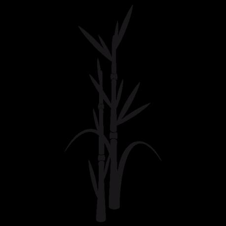Sticker Pousses de bambous