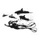 Sticker Plongeur et dauphins
