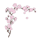 Sticker Sakura cerisier